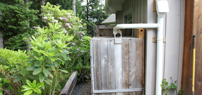 rainwater catchment system update