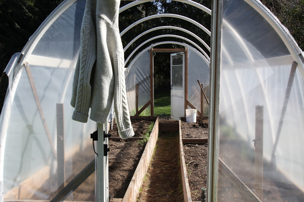 hoophouse_new_plastic_6